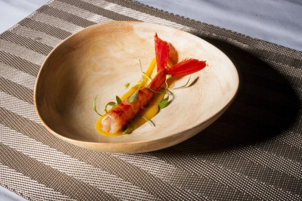 pratos ceramica